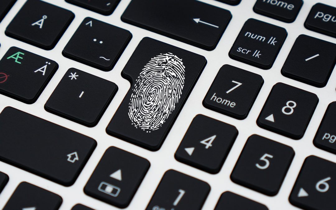 Privacidade Zero